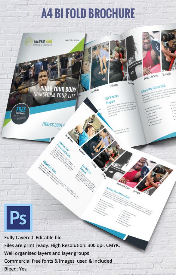 gym brochure template 17 best gym brochure templates download documents in psd