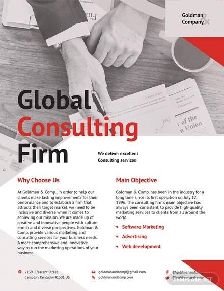 consultant2