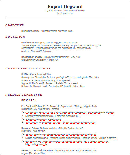 basic engineering resume template3