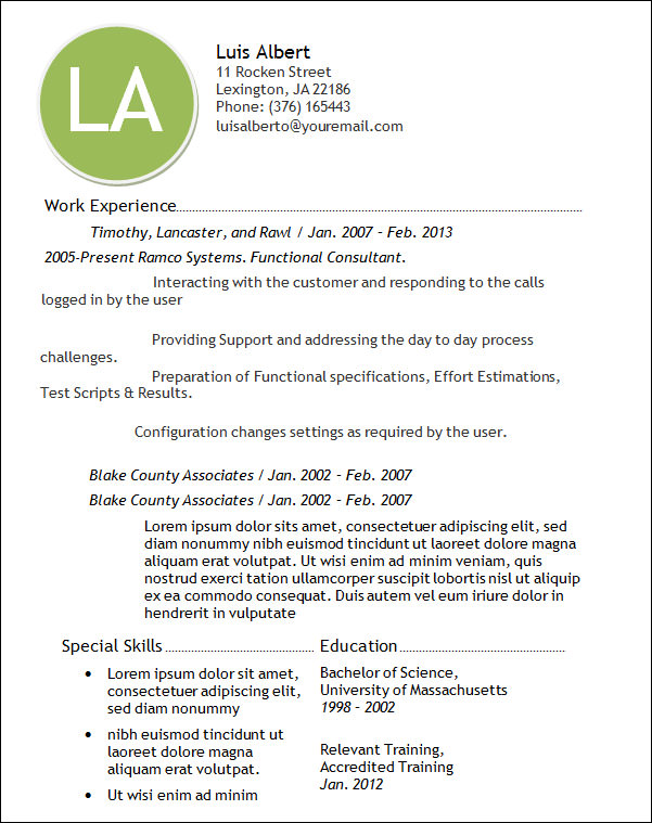 professional technical resume