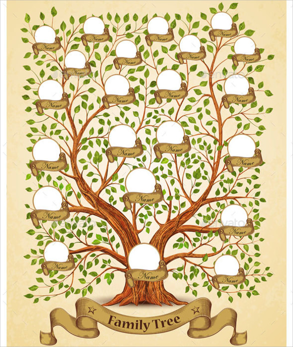 53 family tree templates sample templates for Picture of family tree template