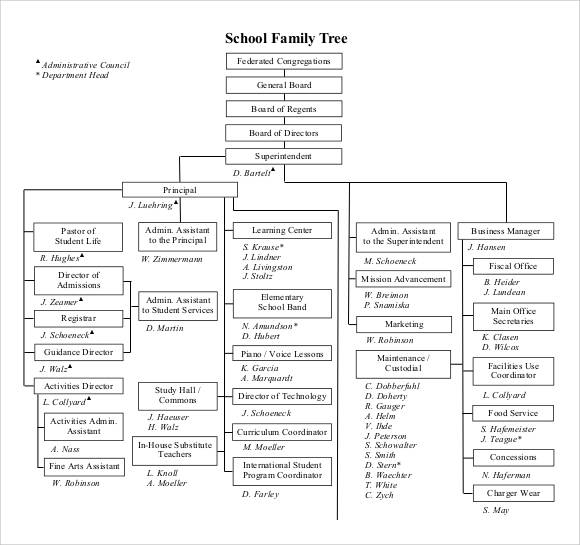 school family tree