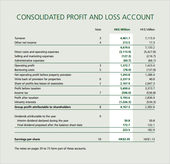 Consolidate Profit And Loss Template  Loss And Profit Statement Form