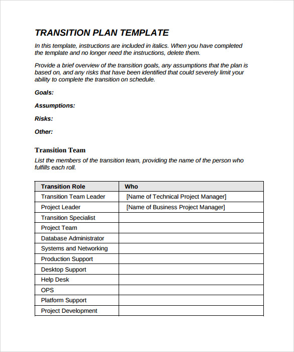 Sample Transition Plan   Documents In Pdf