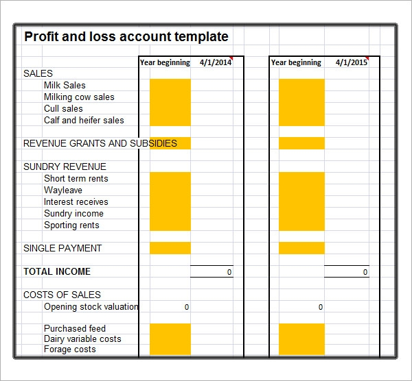 Free Profit And Loss Template  Fillable Profit And Loss Statement