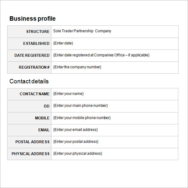 business proposal template3
