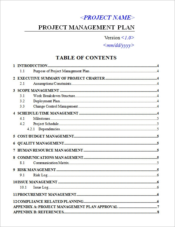 Superb Project Management Plan Template On Project Plan Word Template
