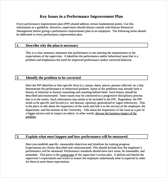 Key Issues In A Performance Improvement Plan
