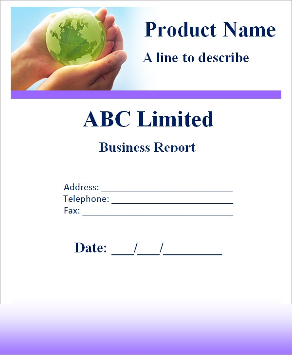Business Report Sample Business Annual Financial Report Template