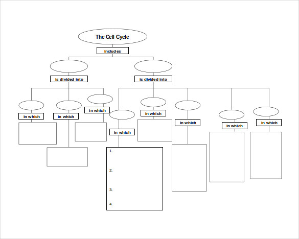 10+ Sample Concept Map Templates | Sample Templates