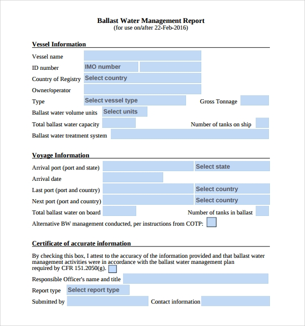 Sample Management Report Template   Free Documents Download In Pdf