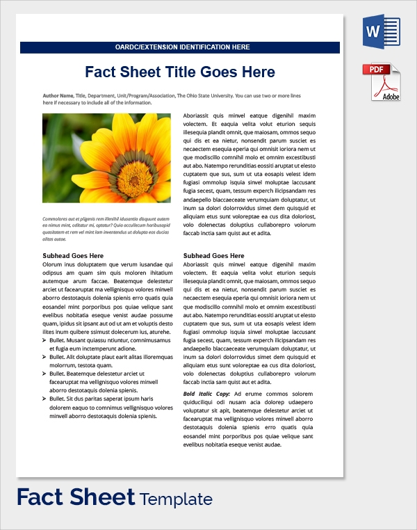 Sample Fact Sheet Template   14  Free Download Documents In PDF WORD ckhNAhfM