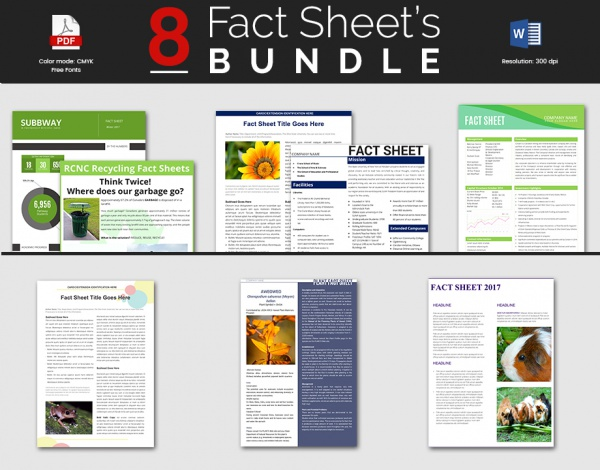 Sample fact sheet template 13 free download documents for Free html product page template