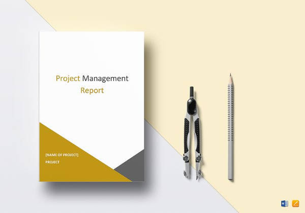 project management report to print