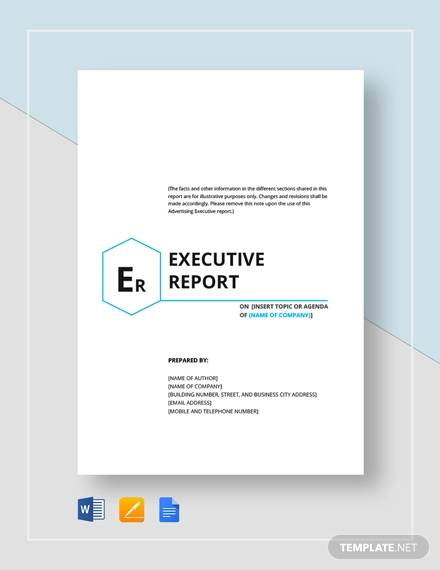 Executive Report Template | Sample Executive Report 10 Documents In Word Pdf Word Google