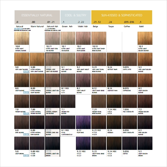 Sample Hair Color Chart   Documents In Pdf