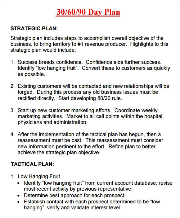 Plan Templates Insssrenterprisesco - 90 day business plan template