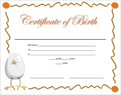 How To Make A Fake Birth Certificate That Looks Real