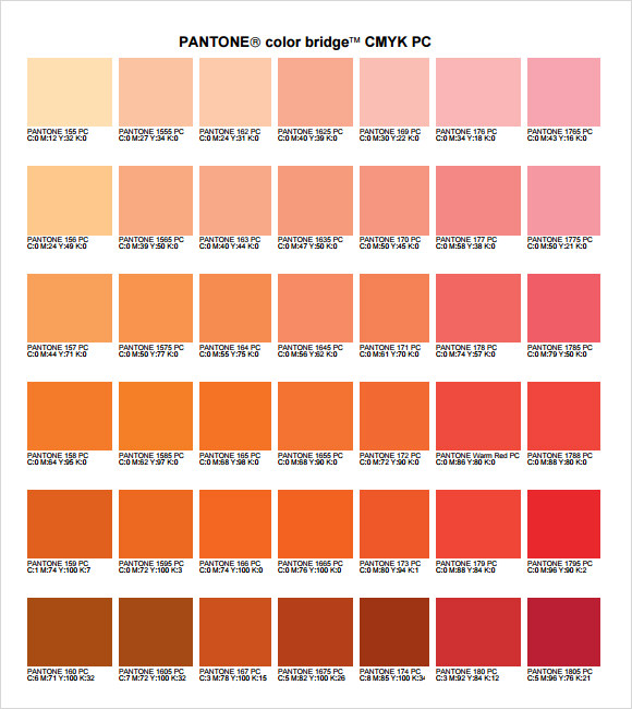 Amazing Pantone Color Chart Template Ideas  Best Resume Examples