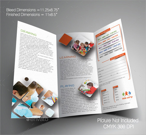 School brochure 9 free and premium download sample for School brochure design templates