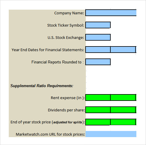 20 analysis templates sample templates for Financial assessment template