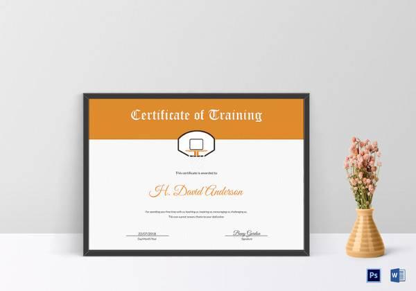 netball training certificate
