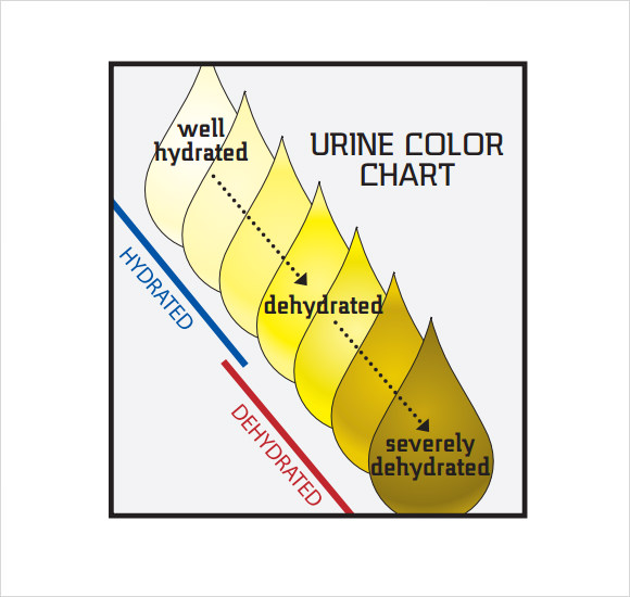 Healthy Urine Color Chart