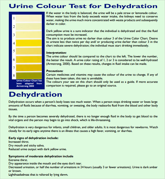 Urine Color Chart   Free Download For Pdf