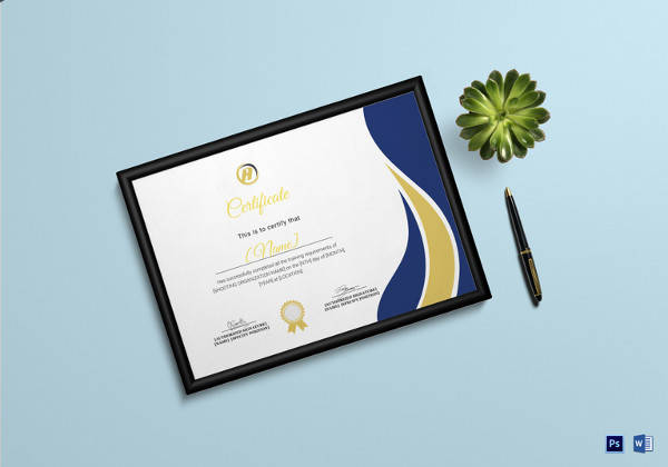 20+ Training Certificate Templates | Sample Templates