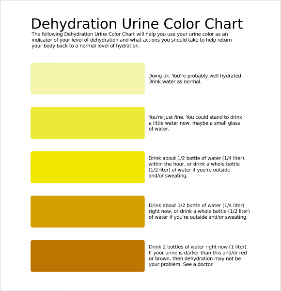 Urine Color Chart 7 Free Download For Pdf