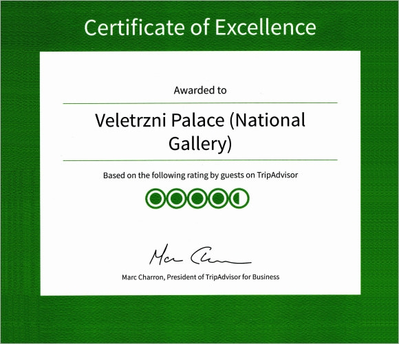 Certificate of Excellence - 13+ Premium and PDF, Word, AI ...