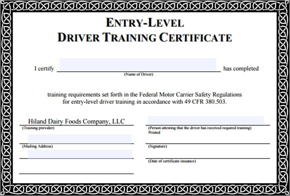 Doc611472 Training Certificate Template Word Training – Training Certification Template