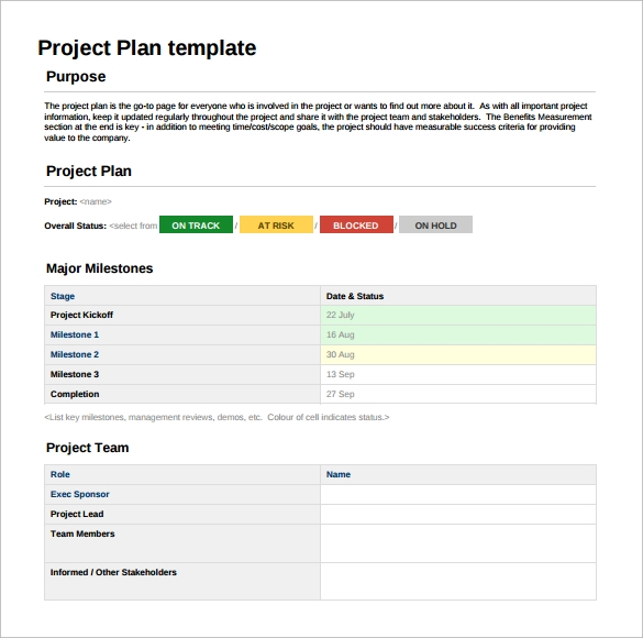 project plan sheet template1