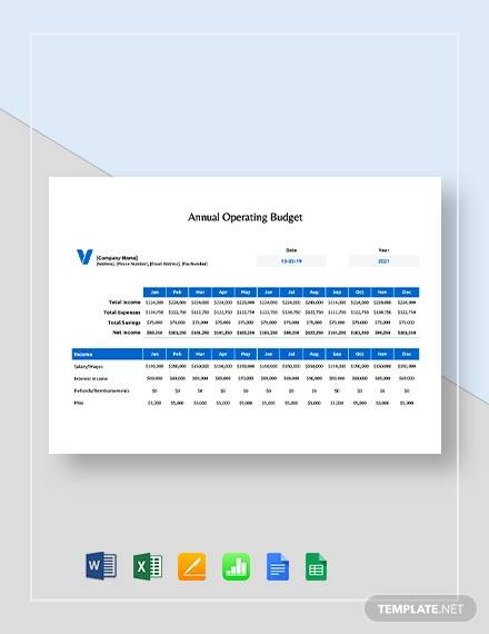annual operating budget template1