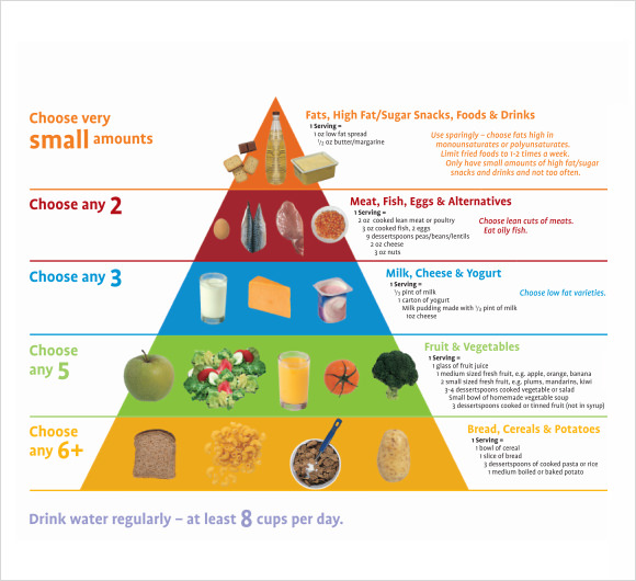 food pyramid template