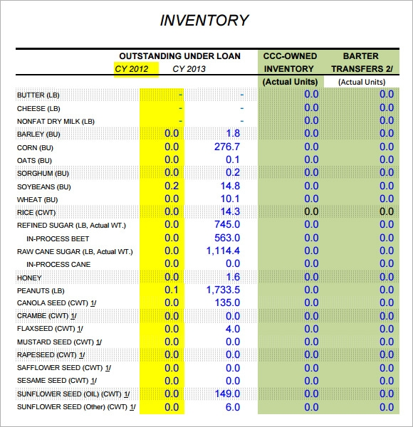 Sample Inventory Report Template 6 Free Documents Download in PDF – Sample Inventory Report Template