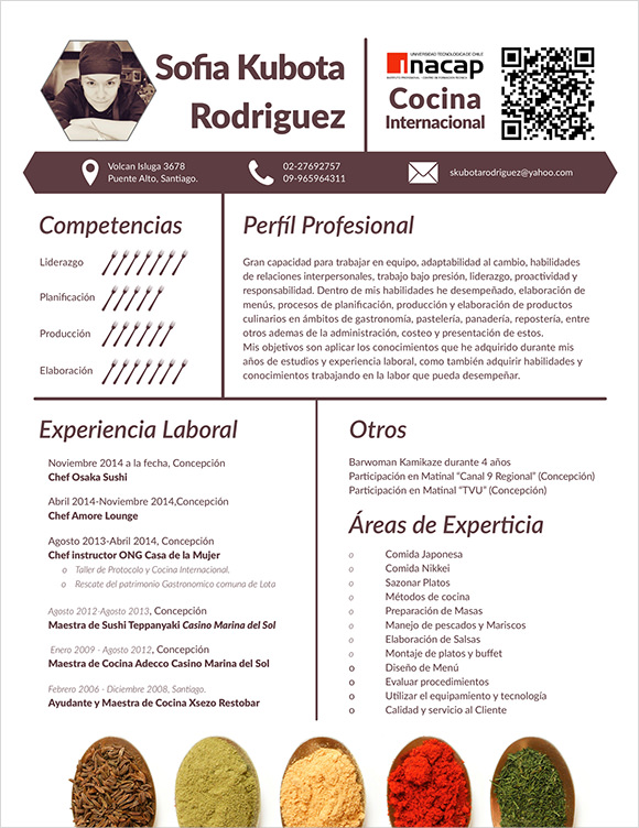 chef resume template download