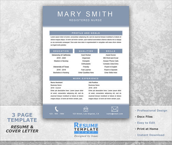 Sample Nursing Resume   Download Free Documents In Pdf  Word  Psd