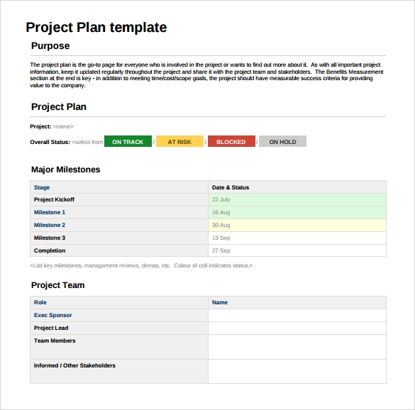Sample Project Plan   Examples Format