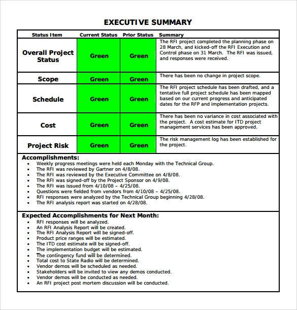 executive summary format for project report