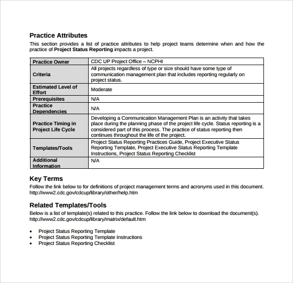 Project Management Status Report Template | 14 Sample Project Status Reports Pdf Word Pages Portable