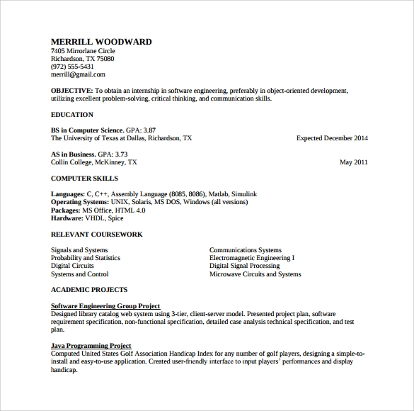 professional resume example template
