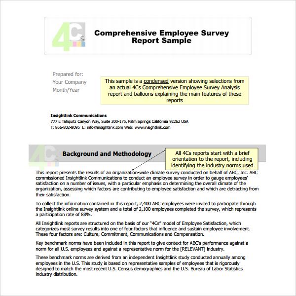 employee surveey analysis report