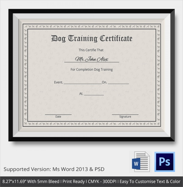 23  training certificate templates  u2013 samples   examples