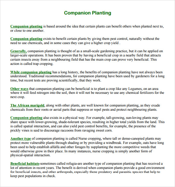 Sample Companion Planting Chart   Documents In Pdf Word