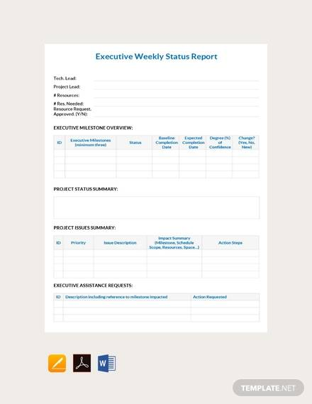 executive report weekly