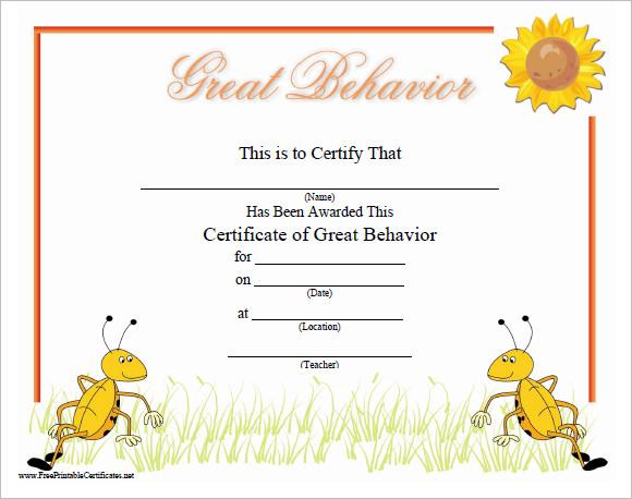 great behavior certificate