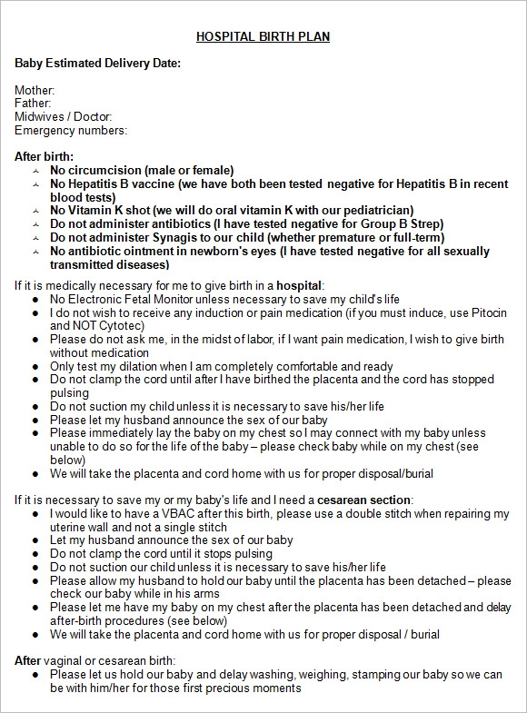 Free Hospital Birth Plan Word Document