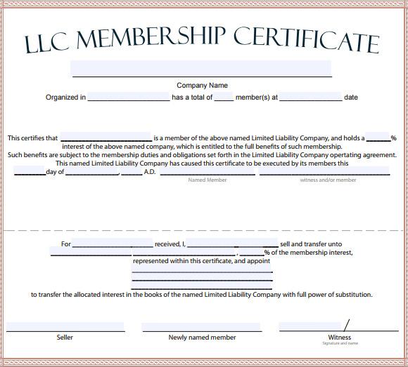 certificate of organization llc template