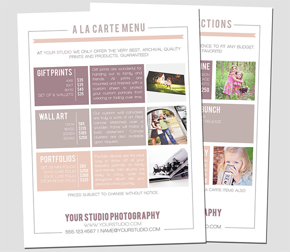 Sell Sheet Template   Samples  Examples  Format